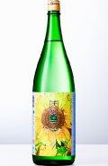 天宝一 夏潤 SPICY 辛口純米  30BY  1.8L